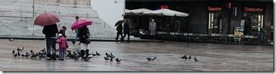 bologna_piazza_piccione-M